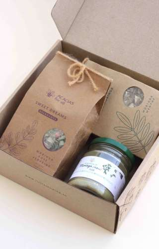 Box moringa - Acacias for all