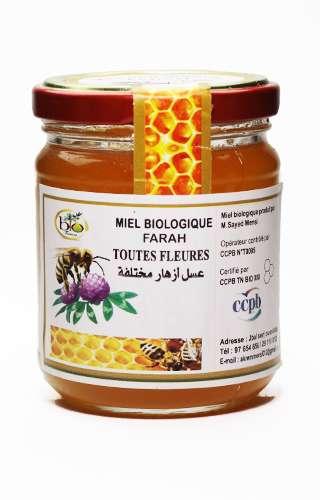 Photo d'un pot de miel bio fleurs des forêts  en petit format